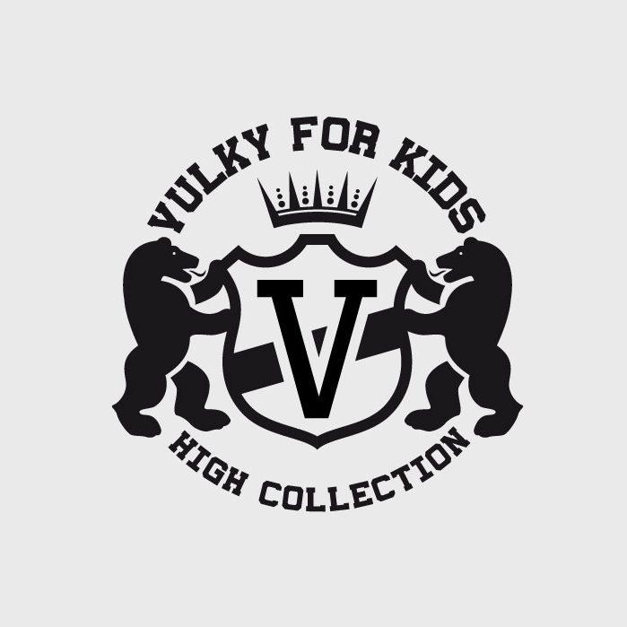 Logo-Vulkyforkids